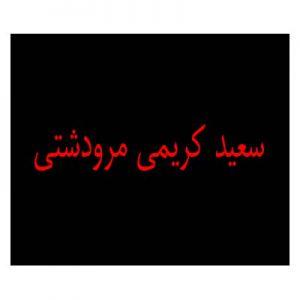 Untitled 1 300x300 - دانلود آهنگ دخترخاله گل ناز من  سعید کریمی مرودشتی ۹۸