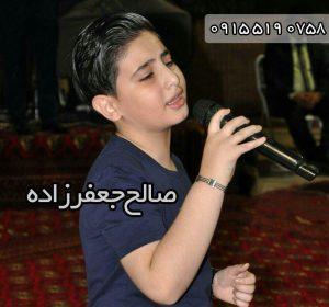 آهنگ جدید صالح جعفر زاده بزن تار که دلم غم داره امشب