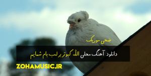 دانلود آهنگ محلی الله کبوتر بر لب بام شمایم