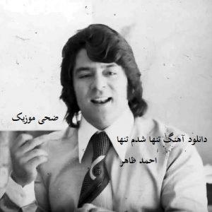 دانلود آهنگ افغانی تنها شدم تنها