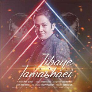 Amin Bani   Zibaye Tamashaei 1581184657 300x300 - دانلود آهنگ امین بانی به نام زیبای تماشایی