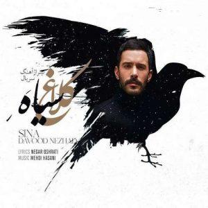Sina Davood Nezhad   Kalaghe Siah  1580764599 300x300 - دانلود آهنگ سینا داودنژاد به نام کلاغ سیاه