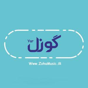 1571880482 0 9932 300x300 - دانلود آهنگ ترکی بیمار (گوزل یار) از شبنم تووزلو