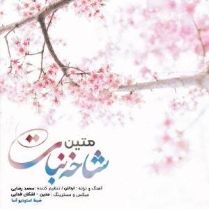 Matin   Shakhe Nabat  1584801164 300x300 - دانلود آهنگ متین به نام شاخه نبات