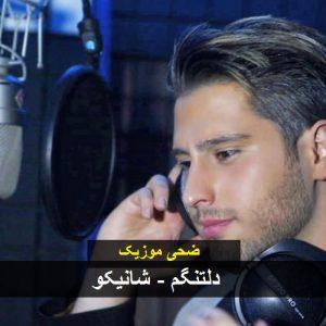 Shahinko Manam Miram 300x300 - دانلود آهنگ دلتنگم از شانیکو