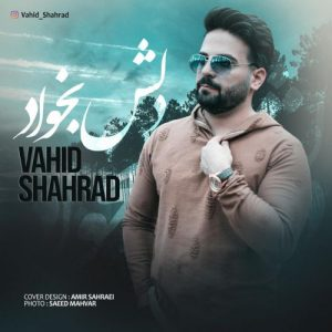 Vahid Shahrad   Delesh Bekhad  1584800864 300x300 - دانلود آهنگ وحید شهراد به نام دلش بخواد