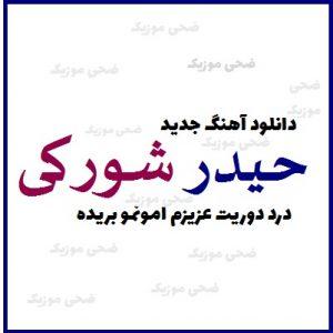Heydar Shokaty   Dard Dorit Azizam 300x300 - دانلود آهنگ غمگین درد دوریت عزیزم امونمو بریده از  حیدر شورکی