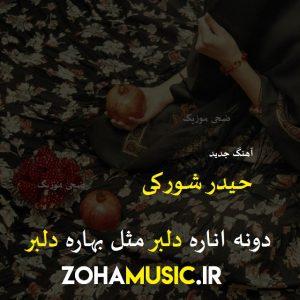 Heydar Shoraki   Doneh Anareh Delbar 300x300 - دانلود آهنگ دونه اناره دلبر مثل بهاره دلبر از حیدر شورکی
